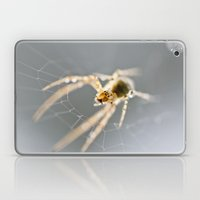 Little Spider Laptop & iPad Skin