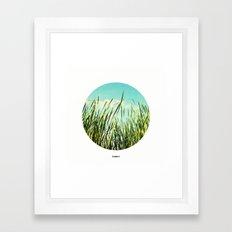a view of summer Framed Art Print