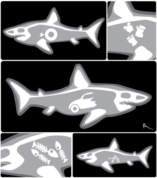 Shark X-Ray Art Print
