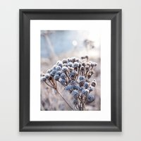 Sugar Coat Framed Art Print