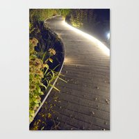 Night Walkway  Canvas Print
