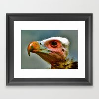 Ethel The Vulture Framed Art Print