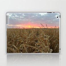 Corn Maze Sunset Laptop & iPad Skin