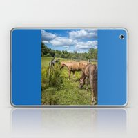 Out To Pasture Laptop & iPad Skin