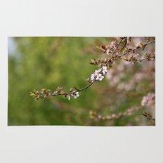 Blossom  - JUSTART © Rug