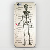 Skeleton In Love iPhone & iPod Skin