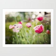 Pink Ladies Art Print