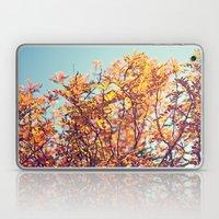 Mountain Fall Laptop & iPad Skin