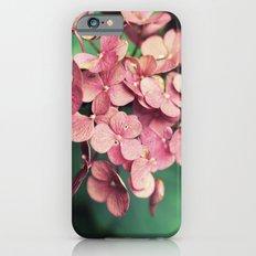 Hydrangea iPhone 6 Slim Case