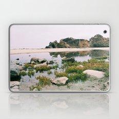 Pfeiffer Beach Laptop & iPad Skin