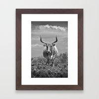 Old Texas Longhorn In Fi… Framed Art Print