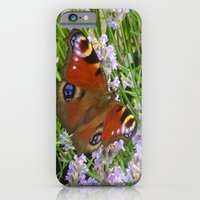 A Peacock Butterfly On A Laveder Bush iPhone 6 Slim Case