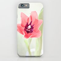 Pretty Pink Tulip iPhone 6 Slim Case