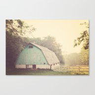 Morning Haze  Canvas Print