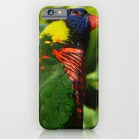 iPhone & iPod Case featuring Lorikeet by Emma's Designs