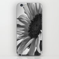 Sunflower Black & White iPhone & iPod Skin