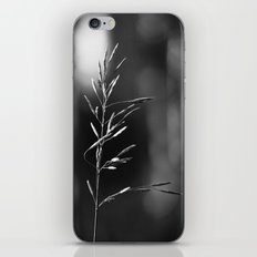 Smother iPhone & iPod Skin