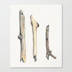 Little Sticks Watercolor Study Canvas Print
