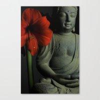 Amaryllis Buddha Canvas Print
