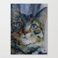Mystery Tabby Canvas Print