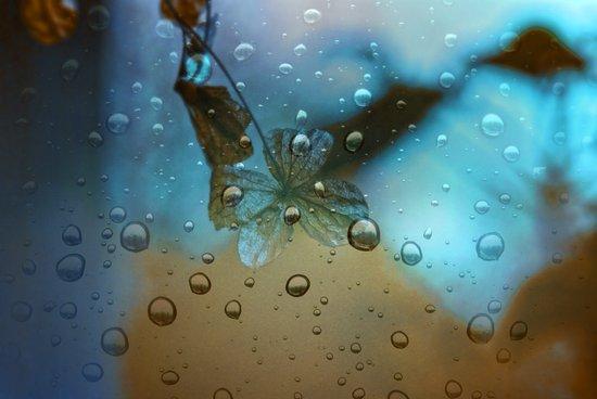 Rain Drops Keep Fallin Art Print