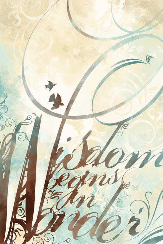Wisdom Begins In Wonder Art Print