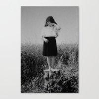 Summer Tale Canvas Print