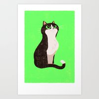 A cat just because Art Print