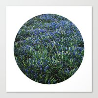 Planetary Bodies - Blue Flowers Canvas Print