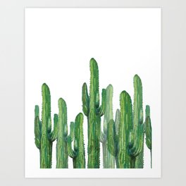 Art Print - cactus basic - franciscomffonseca