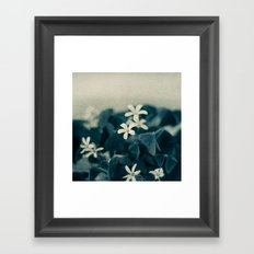 Pretty in Blue Framed Art Print