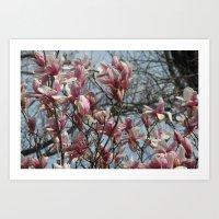 Springtime! Art Print