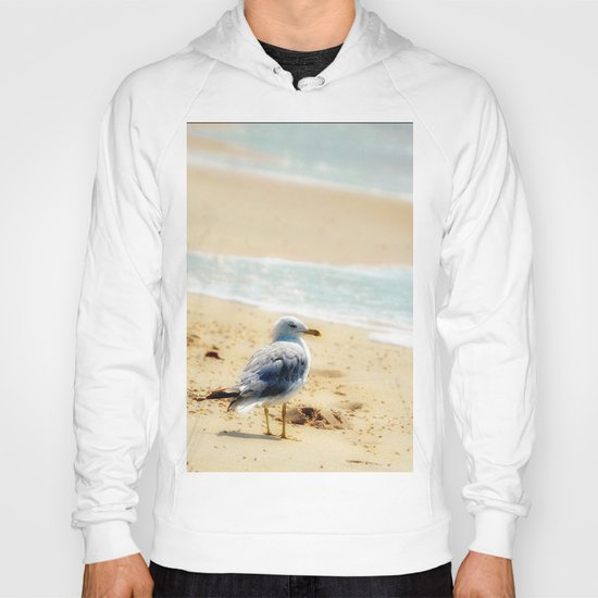 Lonely gull of summer. Hoody