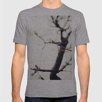 Small Tree Mens Fitted Tee Athletic Grey SMALL