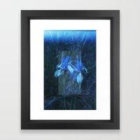 Iris on Film Framed Art Print