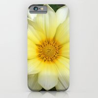 Sun shines for everyone iPhone 6 Slim Case