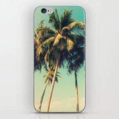 tropical trees in florida iPhone & iPod Skin