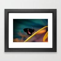 Butterfly#2 Framed Art Print