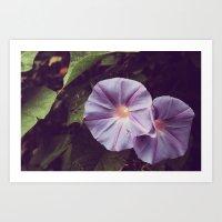 Le Violet De Haut-parleu… Art Print