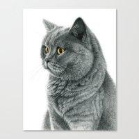 The Chartreux Portrait G… Canvas Print