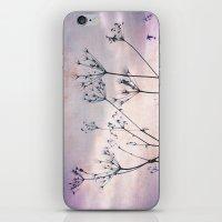 Evening Stars iPhone & iPod Skin