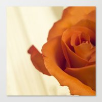Autumn Rose Canvas Print