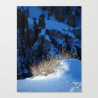 Bryce Canyon Chill Canvas Print
