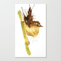 Mrs Wren Canvas Print