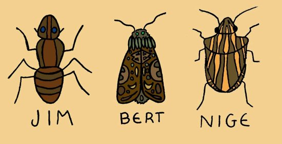 bugs. Art Print