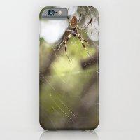 Walking in a spiderweb iPhone 6 Slim Case