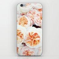 Garden Roses iPhone & iPod Skin