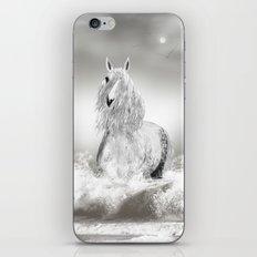 Angharad iPhone & iPod Skin