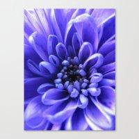 Macro Blue Canvas Print