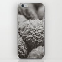 Sepia Black And White Bo… iPhone & iPod Skin